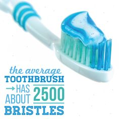 #toothbrushfacts #dentalfacts