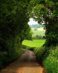 followthewestwind:  llbwwb:  England landscape by Sido. Light at the end of the tunnel.