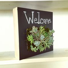 Chalkboard Vertical Garden by VerticalFlora on Etsy