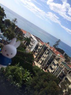 Yes! Ik mocht mee met Miranda naar Madeira. Om te bewijzen dat het een eiland is en je de Atlantische Oceaan kan zien ben ik op de foto gegaan met de zee op de achtergrond.