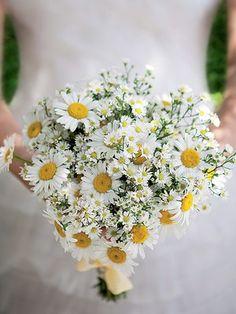 bouquet de flores do campo brancas - Pesquisa Google