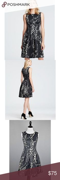 """Ann Taylor Black Floral Garland Flare Dress New with tags Brand: Ann Taylor Size: 0 Chest: 30""""  Waist: 26"""" Length: 35"""" Zips on side  Front pleats No lining Ann Taylor Dresses Mini"""