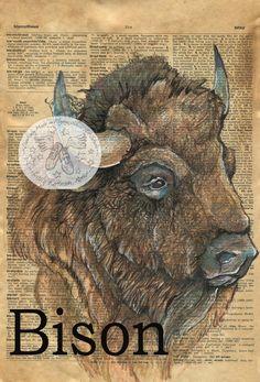 Druck: Bison-gemischte Medien Zeichnung auf antike Wörterbuch