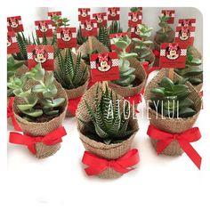 Bu hafta renkli olacağını söylerken ciddiydik😊🐭🎈 #sukulent #succulents #minisukulent #kaktus #succulentaddicted #succulove #minniemouse #succulentobsession #nikahsekeri #babyshower #disbugdayi #birthdaygift #weddingfavour #nişanhatırası #nişanhediyesi #sözhatırası #sözhediyesi #düğünhediyesi #düğünhatırası #kırdüğünü #disney #flower #green #bride #groom #teraryum #terrarium @pnr_aybkn Succulent Wedding Favors, Cactus Wedding, Succulent Gifts, Succulent Gardening, Succulent Arrangements, Succulents, Cactus Care, Cactus Cactus, Baby Shower Deco