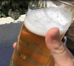 pint of nettle beer home brew