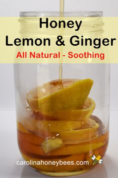 You can make this all natural soothing tonic to ease the discomfort of coughs or colds. Infused honey with lemon and ginger. Ginger Lemon Honey Tea, Raw Honey, Plant Based Eating, Plant Based Diet, Honey Recipes, Whole Food Recipes, Honey For Cough, Cooking With Honey, Eating Raw