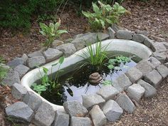 Bathtub live pond...old bathtub....black tarp....rocks...gravel....and some different heights of plants......perfect!!!