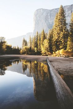 El Capitan Launch your own makeup line. Yosemite National Park, National Parks, Attack On Titan Aesthetic, Landscape Photography, Nature Photography, Yosemite Valley, Over The River, Adventure Is Out There, Wanderlust Travel