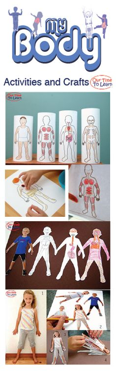 Introduction to human anatomy activity and craft ideas, from Our Time to Learn. For ages 4-6, preschool, kindergarten, 1st grade, and home school.