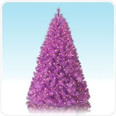 Purple Christmas Tree.  It's a Christmas miracle!