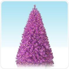 Purple Christmas Tree.  It's happening.