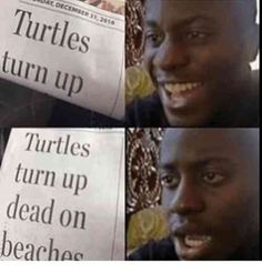 Very dark plot twist | TrendUso #turtle #turtles #animal #animals #plottwist #dark #funny #hilarious #humor #humorous #humour #meme #memes #memesdaily #lol #wtf #omg #rofl