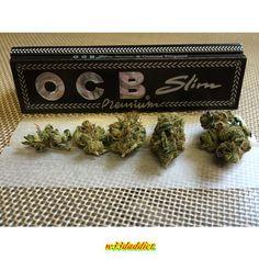 #w33daddict #Buds #Nugs #weed #Marijuana #Ganja #HighGrade #OCB #Slim