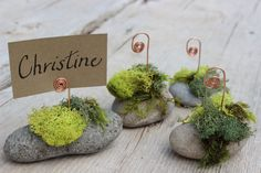 Hey, I found this really awesome Etsy listing at https://www.etsy.com/listing/161199151/ -wedding-placecard-holders-garden-wedding
