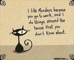 Brainless Tales - Mondays for cats