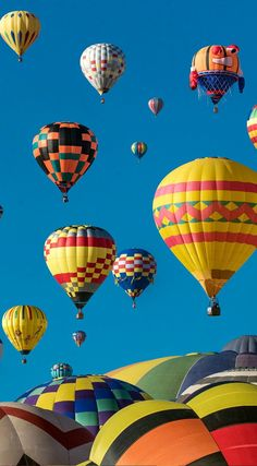 Bristol International Balloon Fiesta  is a free family event held at Ashton Court over 4 days.