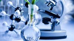 'Inreisverbod VS slecht voor wetenschap' | NU - Het laatste nieuws het eerst op NU.nl