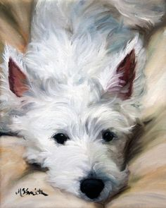 West Highland White Terriers Dog Print Looks like my Tessa