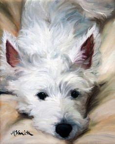 West Highland White Terriers Dog Print Looks like my Tessa