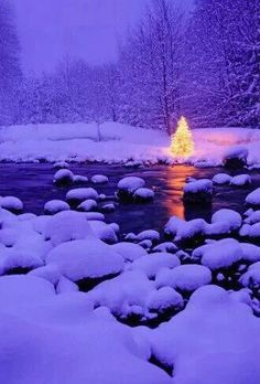 Christmas sparkles and winter snow