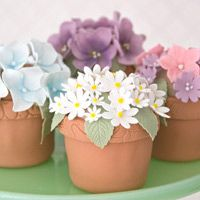 These sweet little pots will help you develop a range of sugarcraft skills. You will learn how to make 5 different styles of flowers and leaves along with icing and piping.