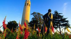 24 free things to do in San Francisco - Lonely Planet Living In San Francisco, San Francisco Travel, Vacation Trips, Vacation Spots, Vacations, Oh The Places You'll Go, Places To Visit, Vegas, San Fransisco