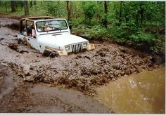 Jeep Gone Mudding Jeep Wrangler Yj, Jeep Cj, Jeep Truck, 4x4 Trucks, Muddy Trucks, Blue Jeep, White Jeep, Car Trailer, Cool Jeeps