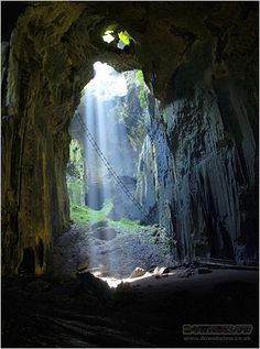 about-gomantong-caves-ladders.jpg (320×430)