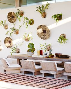 Wall Plants + Woven Baskets