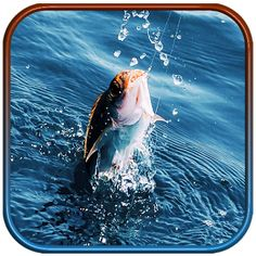 Real Fishing Pro 3D  Let's fish with our Free Real fishing pro 3d game where you can fish many species and have fun with our 3d fishing mania. This real fishing pro comes with 6 vivid environments tons of collectibles and over dozens of unique species of fishes to hunt for makes it the best (free) hunting game in the Play Store.  Real Fishing is best 3d fishing game and you can try catching all keys of paradise by fishing all beautiful sea fishes. You can have fun catch them all and if not…