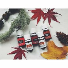 Young Living Holiday Oils/ Contact: smilesnnlaughs@yahoo.com