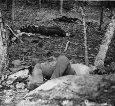 Four dead soldiers in the woods near Little Round Top at Gettysburg, Pa., July 1863.