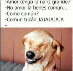 Jajaja  #humor #temporadas #jajaja #memes #risas #sonrisas #exclusividad #valentin #halloween #octubre #febrero #diciembre #regalos #gifts