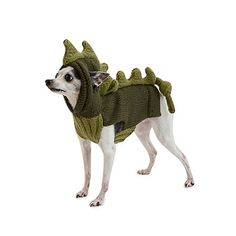 Give your pet prehistoric panache with this hand-knit dinosaur sweater. Halloween Costumes Pop Culture, Dog Halloween Costumes, Halloween Ideas, Dinosaur Sweater, Dinosaur Pet, Knit Dog Sweater, Dog Sweaters, Diy Dog Costumes, Star Wars