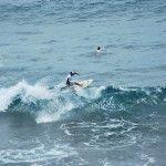 Pasión por el surf, los reyes de la FAE  Hermosa historia de Padre e Hijo!