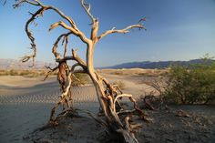 Guides - Death Valley, CA - Introduction - Dave's Travel Corner