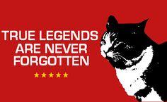 True Legends Are Never Forgotten