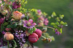 Spring Bouquet _ Floret Flower Farm by Erin Benzakein / Floret Flower Farm, via Flickr