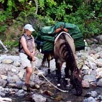 Horse Camping without Pack Horses: Using ultra-light backpacking gear you should be able to pack a tent, cook stove and fuel, sleeping bag and personal necessities for a very comfortable trip with just hornbags and horse saddlebags
