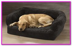 Orvis Lounger Deep Dish Dog Bed With Memory Foam Medium Dogs Up To 4060 Lbs Slate >>> To view further for this item, visit the image link. (This is an affiliate link) Large Dog Crate, Large Dogs, Small Dogs, Online Pet Supplies, Dog Supplies, Dog Couch, Dog Weight, Orthopedic Dog Bed, Cool Dog Beds