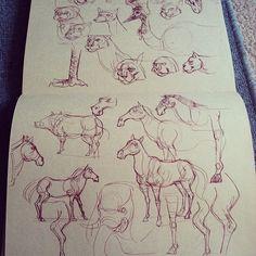Dynamic Sketching 2 - CGMA 2D Academy