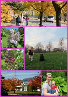Highland Park in Rochester, NY. Spring, Summer and Fall. Home of the Rochester Lilac Festival, and Lamberton Conservatory