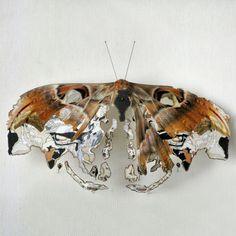 Papillons recomposés |MilK decoration