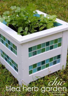 Mosaic tiled planter, great idea. DIY add tiles to planter to freshen it up.