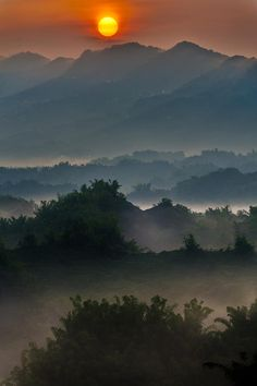 ✯ The sun rises over misty bamboo covered hills in Caoshan, Tainan, Taiwan