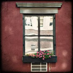 reflections in a window in chelsea, new york city