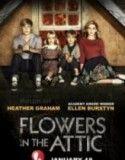 Çatıdaki Çiçekler izle  http://www.fullfilmizle724.net/catidaki-cicekler-full-hd-tek-parca-izle/