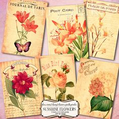 Springtime flower postcards