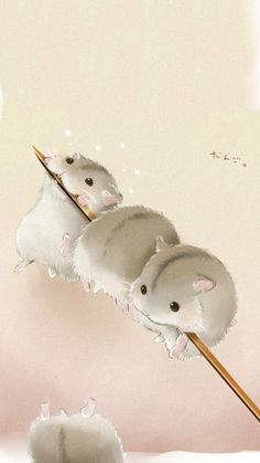 Cute mouse wallpaper - Hamster❤ - - New Ideas Cute Animal Drawings, Kawaii Drawings, Cute Drawings, Drawing Animals, Animals Watercolor, Image Swag, Baby Animals, Cute Animals, Animal Phone Cases