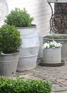 Love the galvanized pots. by lorraine